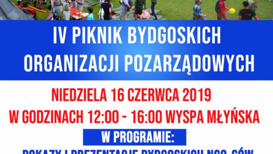 Plakat_A3_Piknik_NGO_2019