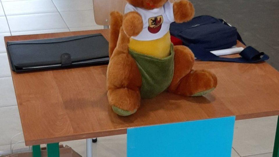 Zdjęcie pluszowego kangurka na stoliku z napisem rejestracja