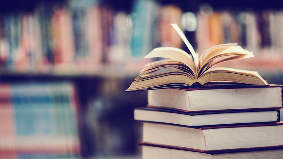 Zdjęcie przedstawia zbiór książek.