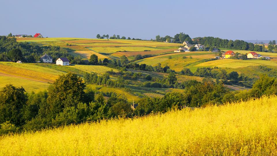 Zdjęcie przedstawia krajobraz polskiej wsi.
