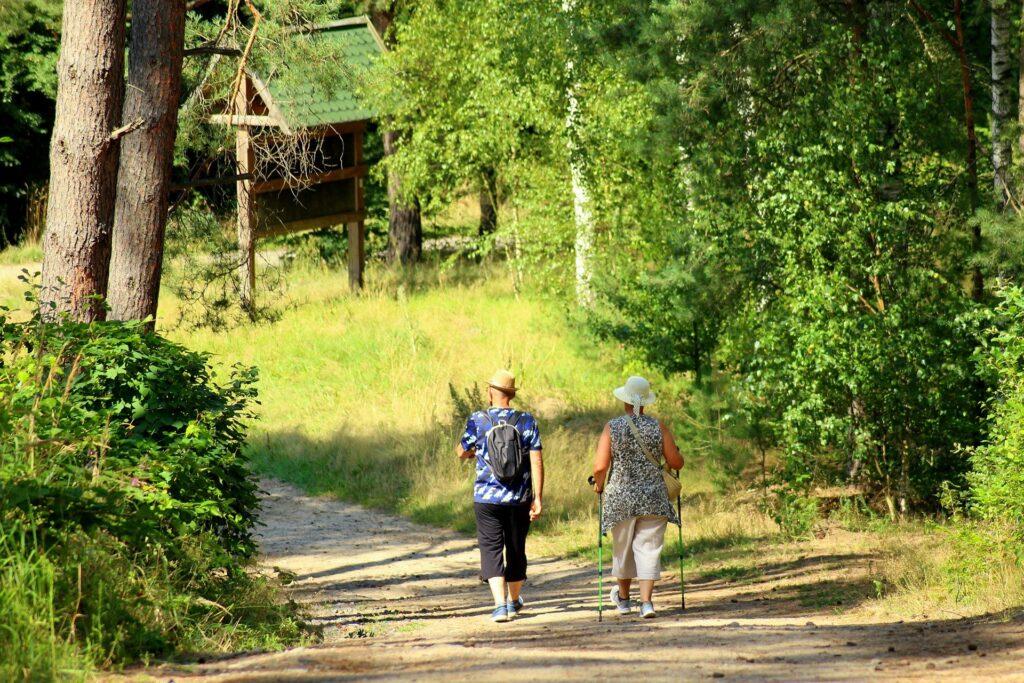 ludzie spacerujący na drodze w lesie
